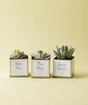 All kinds of Creative Wedding Favor Ideas In Your Wedding